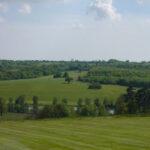 Eridge Park 1
