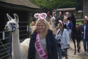 Llama Park - Hen party