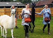 Llama Park - walking