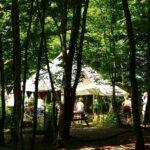 Eco Camp - Communal bonfire