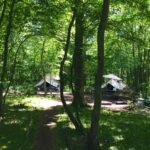 Eco Camp - Wild Boar Woods