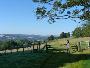 Manor Court farm 5
