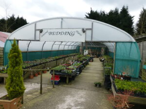 Ashdown Forest Garden Centre - Plants