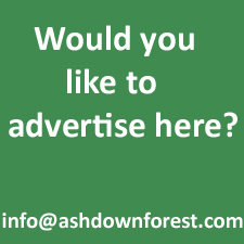 Advertis here copy