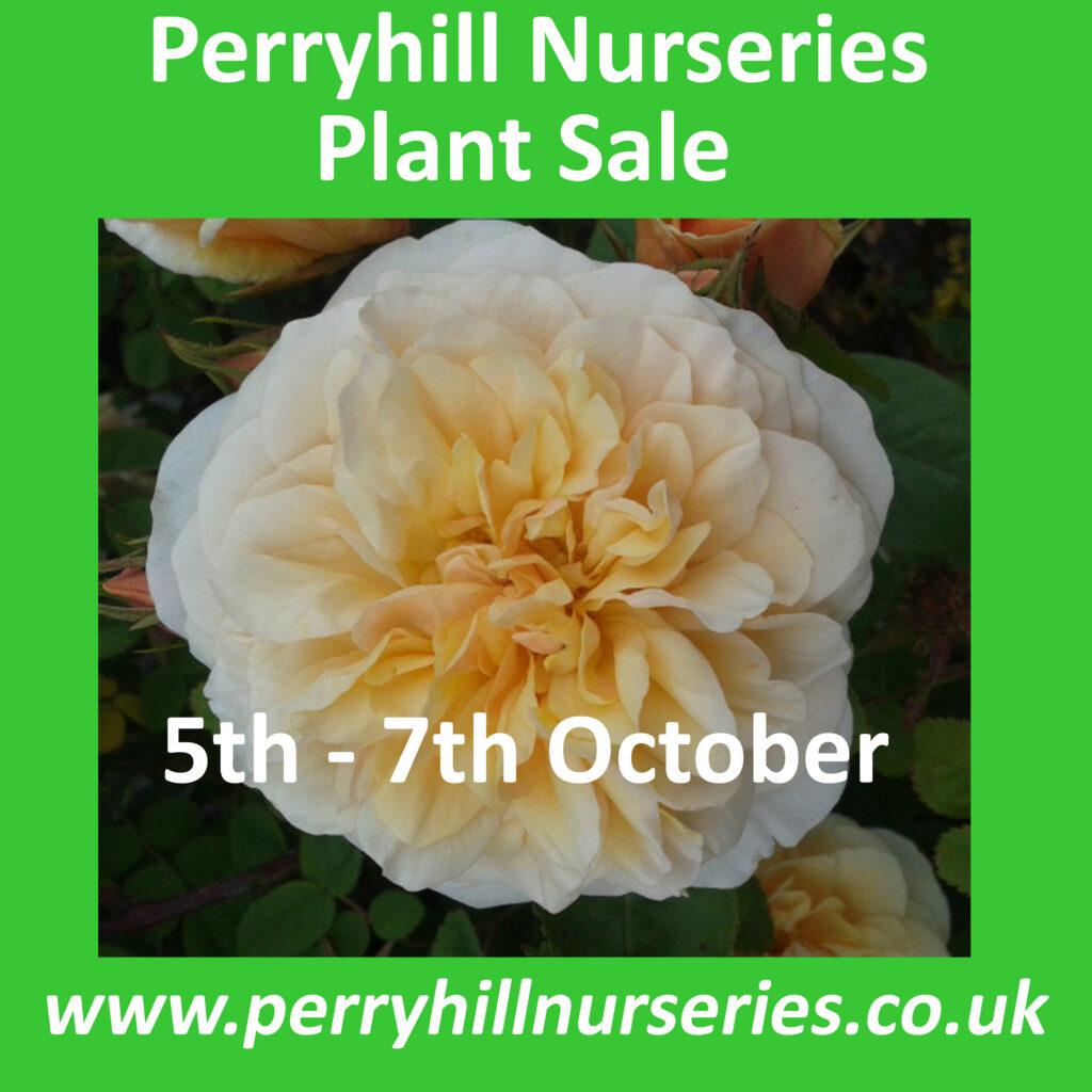 Perryhill Nurseries Advert v4 copy
